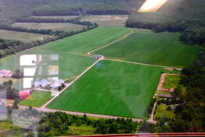 Brookrest Sod Farm - 1
